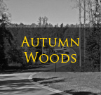 Autumn Woods Iron Station NC Homes