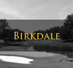 Birkdale Huntersville NC Homes For Sale