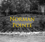 Norman Pointe Denver NC Homes For Sale