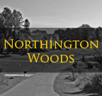 Northington Woods Mooresville NC Homes for Sale