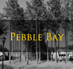 Pebble Bay Denver NC Homes