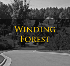 Winding Forest Troutman NC Homes
