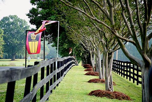 Weddington Nc Real Estate Luxury Homes Luxury Real
